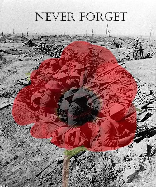 Remembrance_Day___Poppy_Day_by_daliscar.jpg